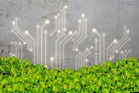 Grey microcircuit, green leaves background