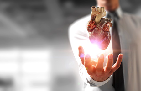 Man s hands showing anatomical heart model. Mixed media. Stock Photo