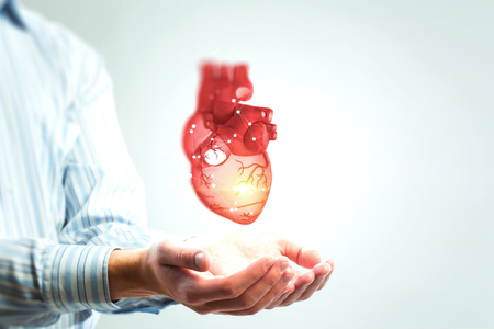 Man s hands showing anatomical heart model.. 스톡 콘텐츠