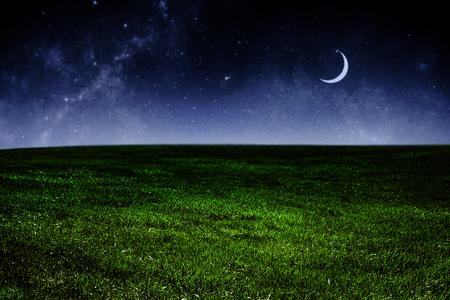Dark night sky over green grass