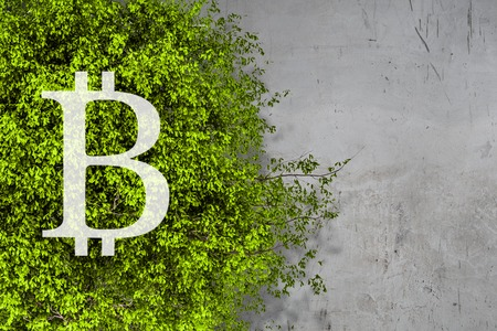The concept of crypto currency coding Banque d'images - 121691293