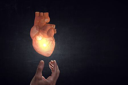 Man`s hands showing anatomical heart model  Mixed media