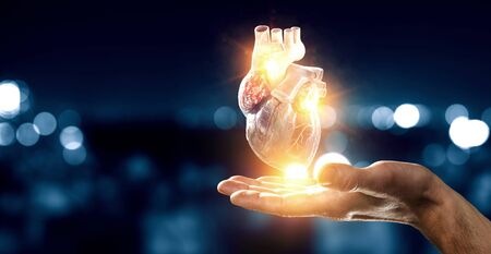 Man`s hands showing anatomical heart model. Mixed media. 版權商用圖片 - 126889241