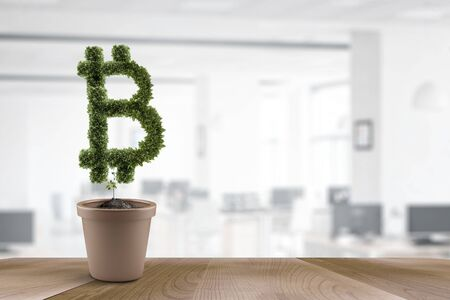 Bitcoin symbol made of green leaves on a plant in a flowerpot, daytime blurred indoor background