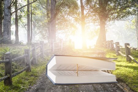 Book with a wooden natural bookmark on forest landscape