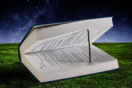 Open book with wooden natural bookmark lying on green grass, blue sky background
