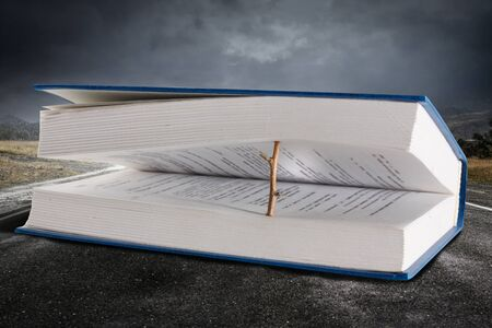 Book open with wooden natural bookmark on dark landscape background