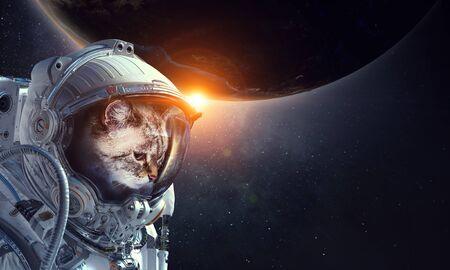 Astronaut cat wearing space suit
