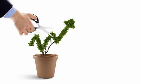 Businessman cutting leaves on money tree growing in pot Foto de archivo