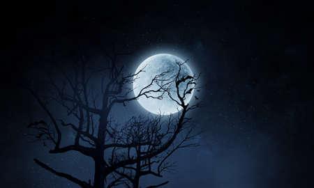 Spooky night image . Mixed media Foto de archivo