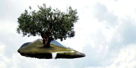 Image of tree and landscape 스톡 콘텐츠