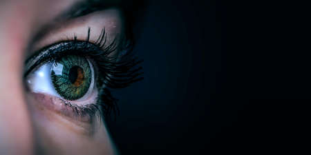 Macro image of human eye Reklamní fotografie - 167041114