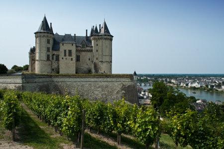 Saumur historic Castle and wine  Redactioneel