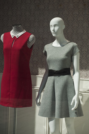 mannequin in the showcase store photo