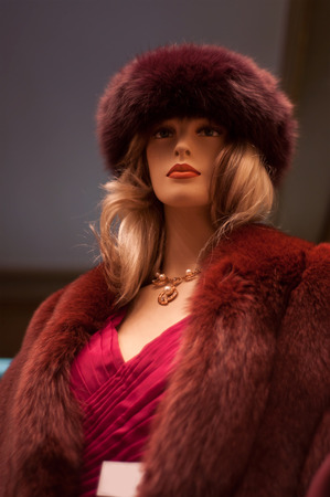 Mannequin winter fashion in a showroom photo