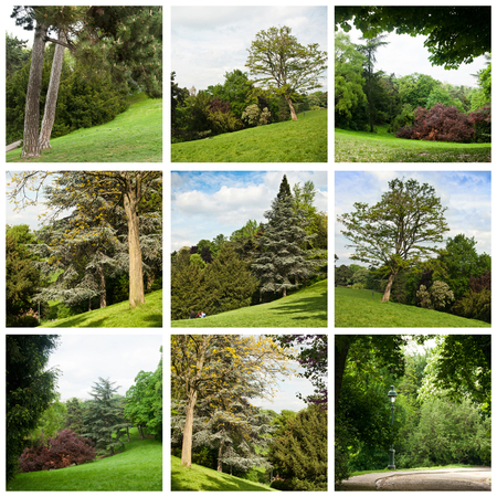 hollidays: buttes-Chaumont park in Paris - collage