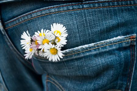 men in jeans: bouquet of daisy in jean pocket Stock Photo