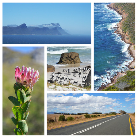 Cape of good hope collage - South Africa