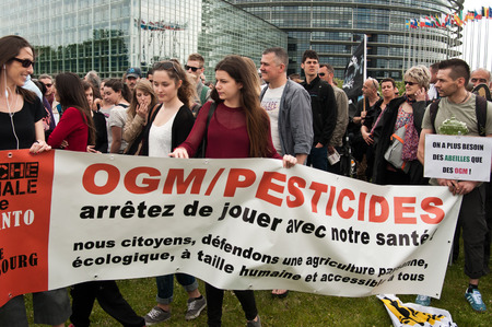 against the current: STRASBOURG  France  23 May 2015  people with banner during the demonstration against Monsanto and the transatlantique treated for the production of GMO in Europe