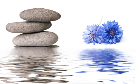 stones in water: zen banner background