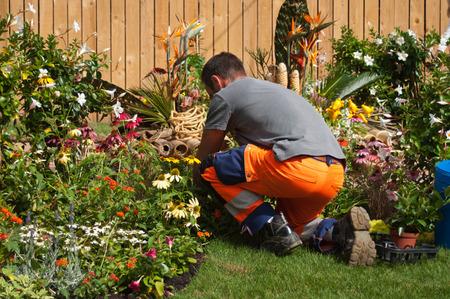 tuinman planten bloemen in een stadspark