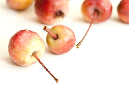 savage: mini savage apples on white background