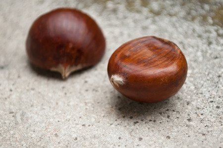 stoned: closeup group of  chestnuts on stoned  background