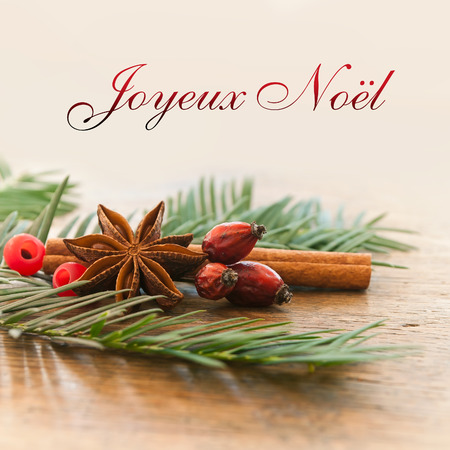 merry christmas card with decorative anise cinnamon and dog rose (text in french) Stockfoto