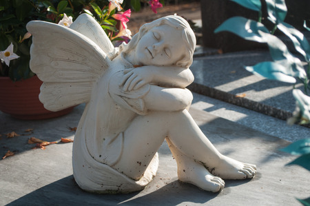 angel cemetery: white angel in cemetery on a tomb