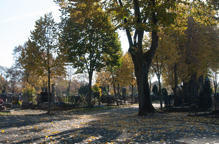 christian halloween: beautiful colorful  trees at cemetery in autumn