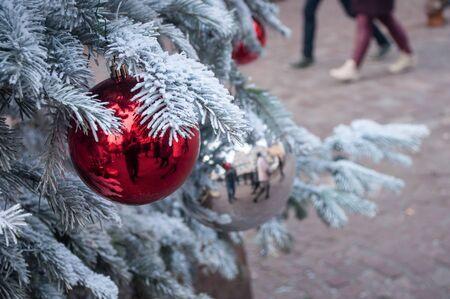 reds: closeup of reds balls  on a snowy christmas tree