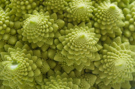 closeup of romanesco cauliflower cabbage texture Banco de Imagens - 71374508
