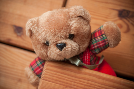 closeup of teddy bear on wooden chest of drawers background