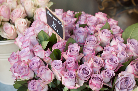 closeup of pink roses bouquets in the florist