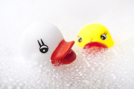 closeup of yellow and white rubber duck toys with moss in bath