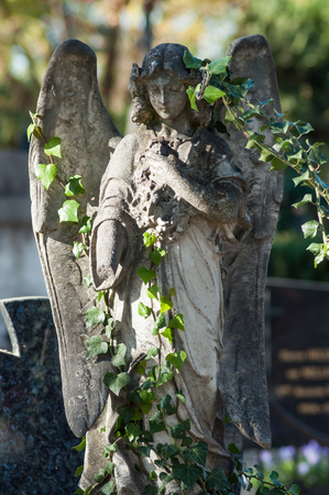 Closeup of stoned angel with ivy leaves on tomb in cemetery Stock Photo