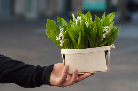 closeup of man with lily of the valley bouquet in wooden basket in hand in the street