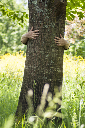 closeup of woman hugging a tree trunk in a meadow Stock Photo - 124624091