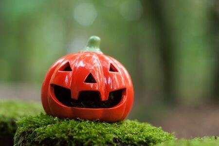 Nahaufnahme von dekorativem Kürbis für Halloween im Wald