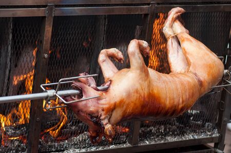 Closeup of roasted pig at the barbecue in outdoor
