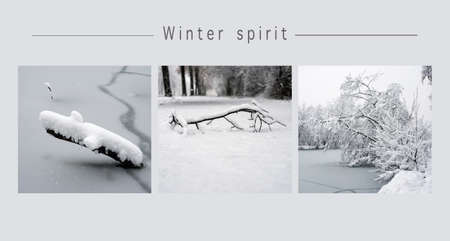 collage of various snowy landscape