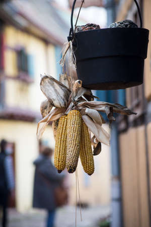 Closeup of dried suspended corn on house facade in the street Stockfoto
