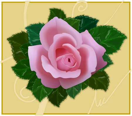 Rosebud with leaves on a beige background Stock Vector - 10952069