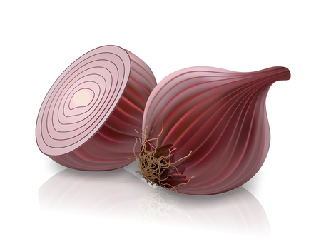 onion isolated: red onion