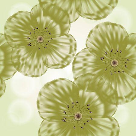 poppy pattern: Grunge seamless spring floral background in green