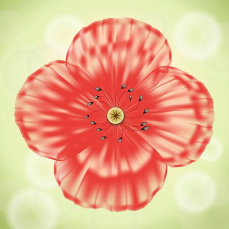 Red poppy flower with transparent petals on green background Stock Vector - 12957630