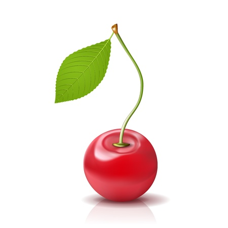 Cherry Icon  Ripe berry with leaf on white Stock Vector - 15158396