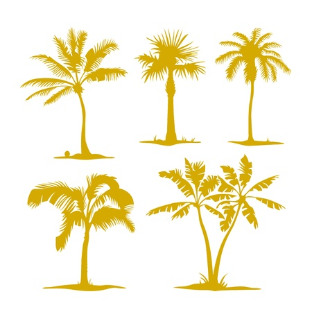 carribean: palm contours isolated on white  Illustration set