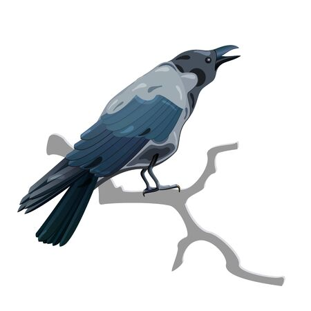 Isolated Grey screaming crow on branch Stock Vector - 15596586