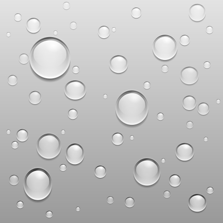 Water Drops Illustration on gray background Stock Vector - 15684094